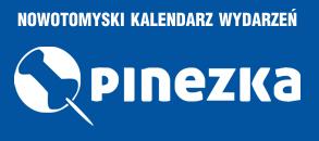 Logo pinezka