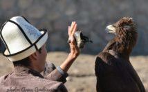 zdjęcie przedstawia sokolnika i sokoła podczas zawodów
