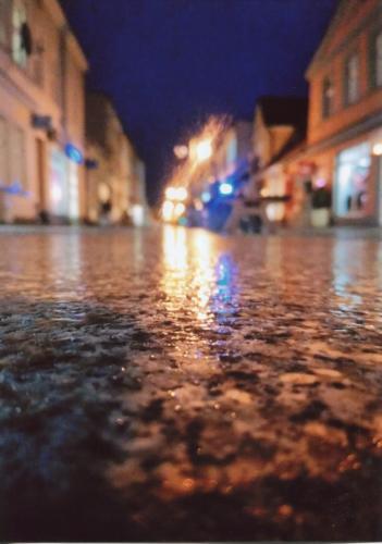 Po deszczu. Autorka: Nicola Serweta